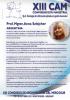 Curriculum Anna Szlejcher